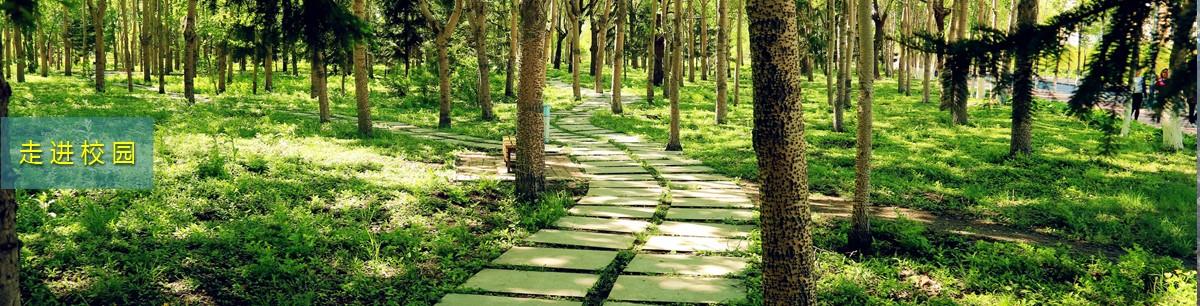 吉林农业大学校园景观